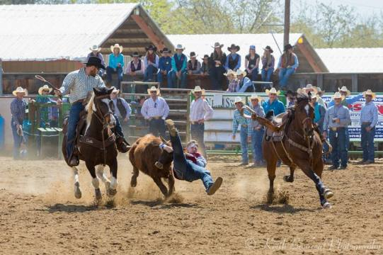 jake steer wrestling
