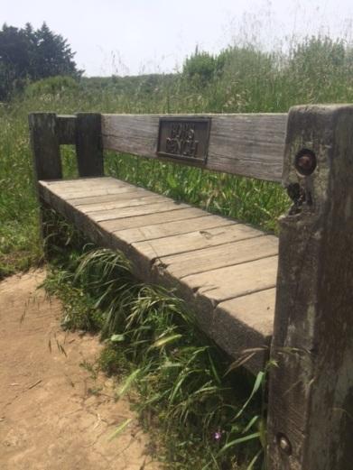 bobs bench